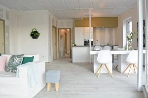 IBK-Estate_JanHammeneckerstraat6_008